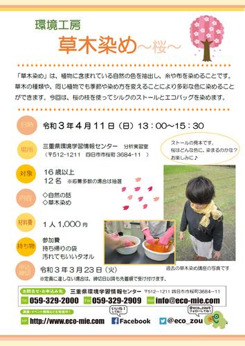 草木染め〜桜〜.png