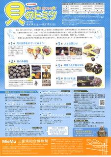 貝のヒミツ2.jpg